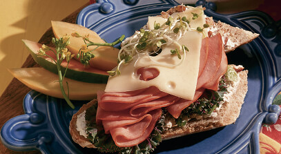 Ham and Swiss Submarine