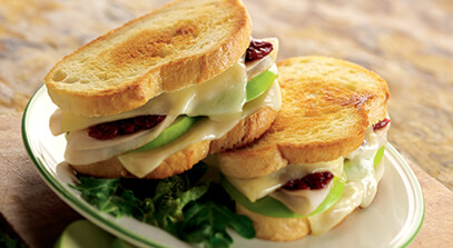 Grilled Turkey and Fontina Sandwich